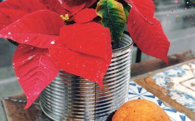 L'arancina e la festa di Santa Lucia